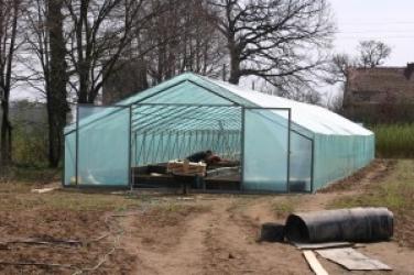 Zdjęcie główne #29 - Hodowla ślimaka jadalnego. Nowy pomysł na świetny biznes dla rolników