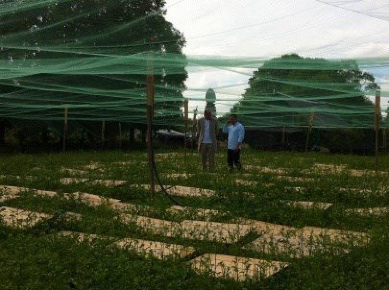 Zdjęcie główne #192 - PSH szkoli najlepszych hodowców ślimaków na świecie