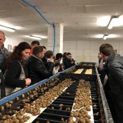 Zdjęcie główne #217 - Coraz więcej chętnych na bezpłatne szkolenia hodowli ślimaków
