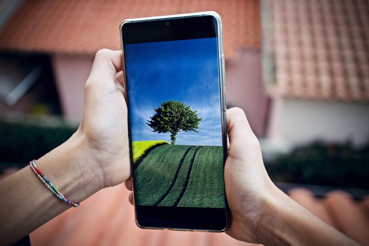 Zdjęcie główne #235 - Możesz sterować swoją hodowlą ślimaków za pomocą smartfona