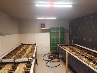 Zdjęcie główne #236 - Zobacz jak ważne jest odpowiednie oświetlenie w hodowli ślimaków